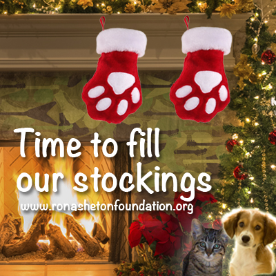 Time to fill our stockings